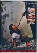 催眠 赤 DX 25 スーパーmc編