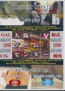 GAL接写トイレ 大阪ゲームセンター和式便所 7