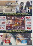 GAL接写トイレ 大阪ゲームセンター和式便所 9