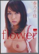 flower 春乃千佳
