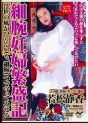 細腕妊婦繁盛記 浮世の風がつらくとも、細腕一つで守ってみせる