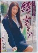 膣内射精輪姦に堕ちた縛られ女キャリア 小早川怜子