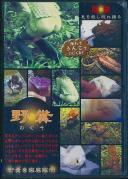 野糞 ギャルの野糞を徹底解剖 2