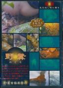 野糞 ギャルの野糞を徹底解剖 3